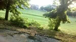 Villa San Giovanni in Tuscia 15/06/2014: un temporale eccezionale!
